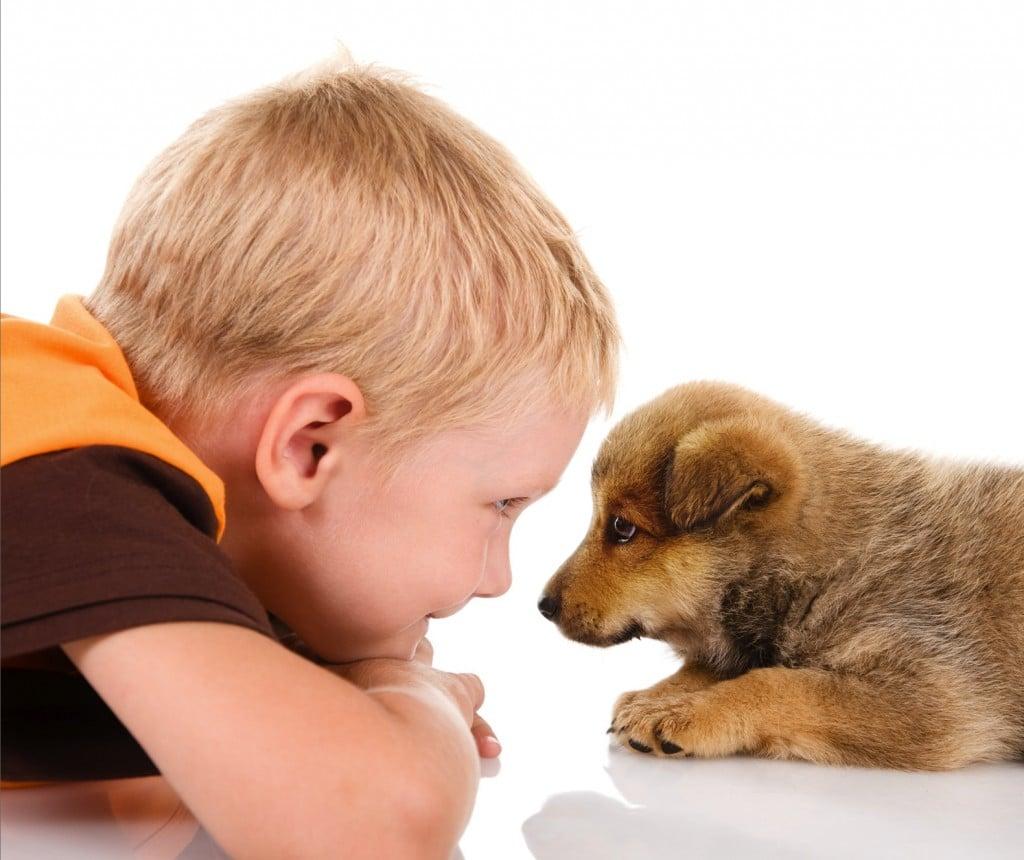 Enfant + chien