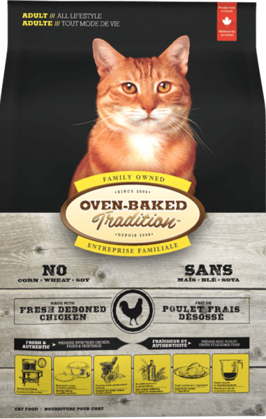 Chicken cat adult front 1